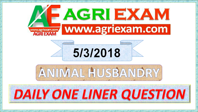 Animal Husbandry one liners