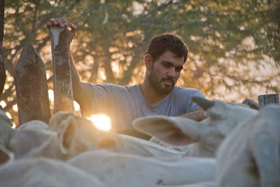 "Cinema: Sesc Registro-SP exibe o premiado filme ""Boi Neon"" nesta quinta"