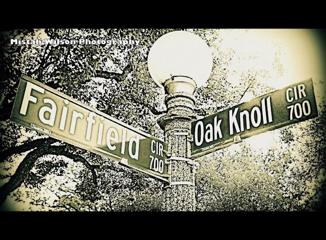 700 Fairfield Circle & 700 Oak Knoll Circle, Pasadena, California by Mistah Wilson Photography