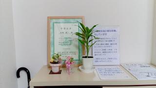 観葉植物の写真1
