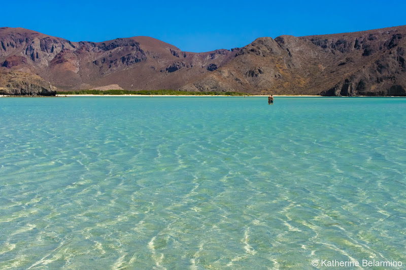 Balandra Beach Things to Do in La Paz Mexico