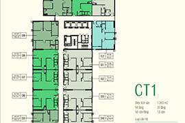 MẶT BẰNG CĂN HỘ ECO-GREEN CITY