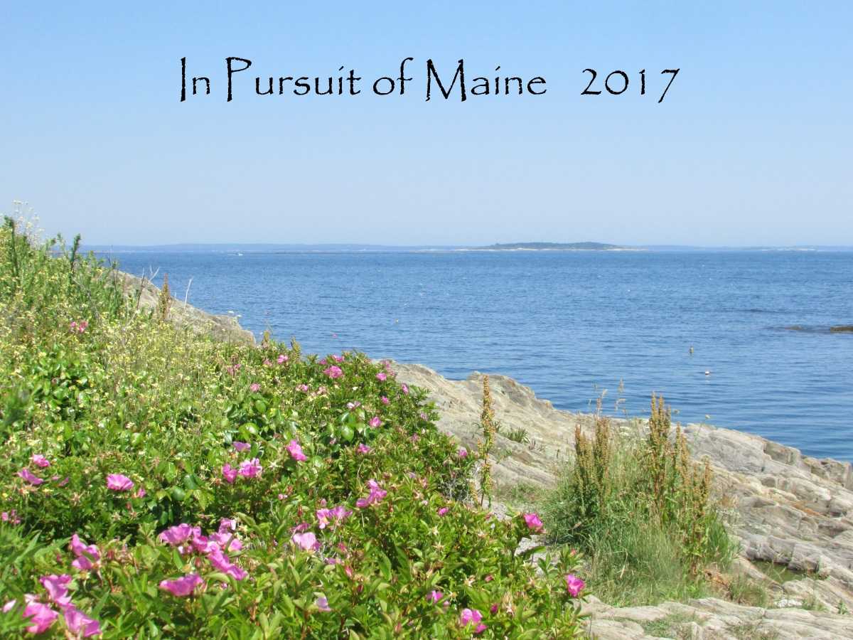 Click photo to buy the In Pursuit of Maine 2017 calendar!