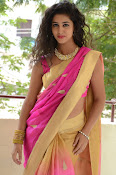 pavani new photos in saree-thumbnail-16