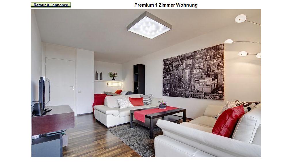 Wohnungsbetrug.blogspot.com: Premium 1 Zimmer Wohnung