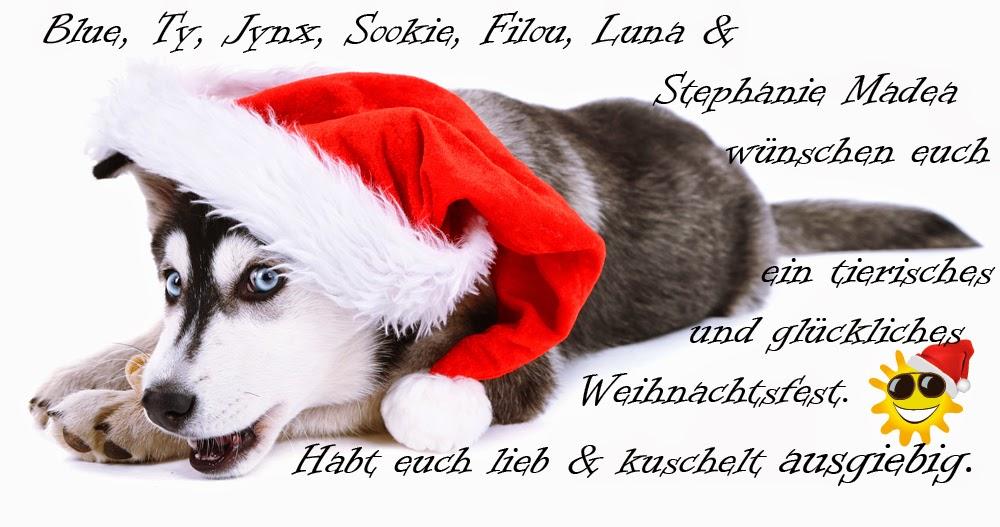 Tierische Weihnachtsgrüße.Stephanie Madea Tierische Weihnachten
