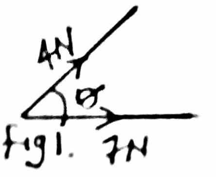 Physics Notes Online 2 0 0 Scalar And Vector Uantities