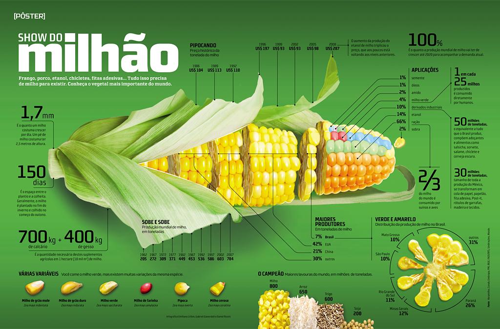 Milho | O Vegetal Mais Importante do Mundo