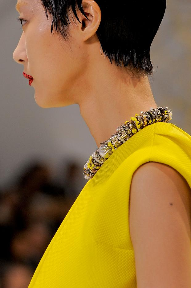 Dior Haute Couture Spring-Summer 2013