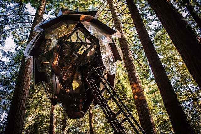 Pinecone Treehouse by O2 Treehouse in Oakland
