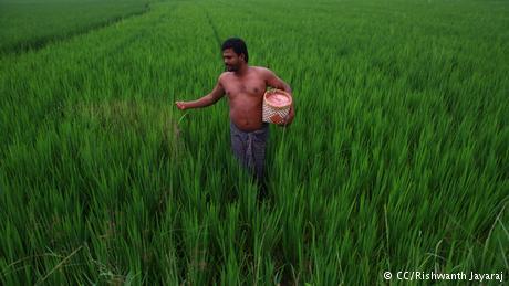 10 Kiat Mengurangi Emisi Karbon Pertanian