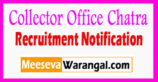 Collector Office Chatra Recruitment Notification 2017 Last Date 25-07-2017
