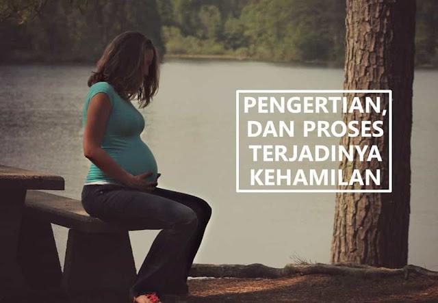 pengertian kehamilan dan proses terjadinya kehamilan
