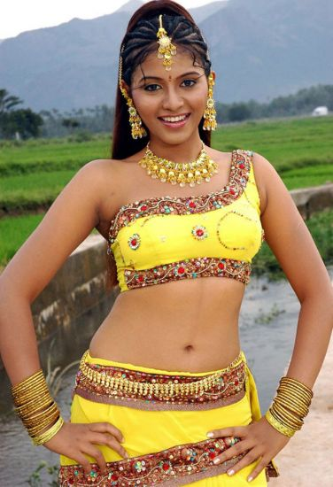 Anjali New Nice Navel Photos And Pics - Tollywood Actress -6354