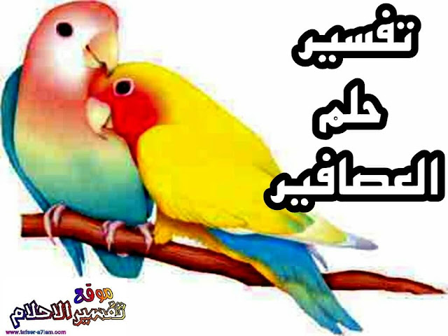 تفسير رؤية العصافير او الطيور في الحلم
