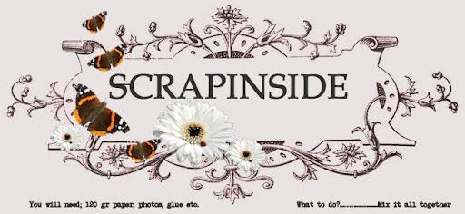 scrapinside