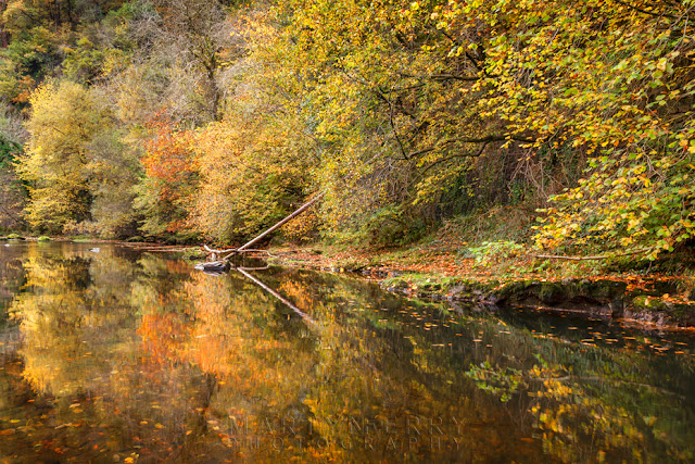 Autumn hues reflect in the Afon Mellte in the Brecon Beacons by Martyn Ferry Photography