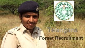 TS Forest Recruitment 2017