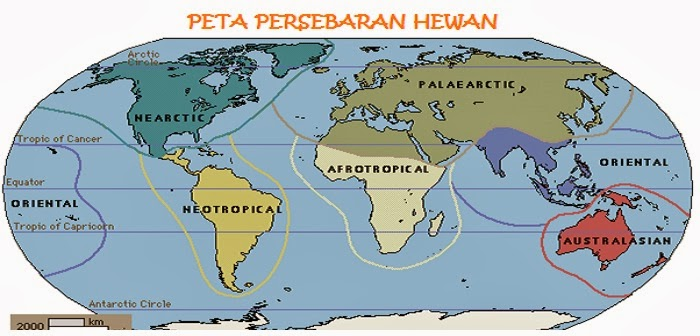 Zona Persebaran Makhluk Hidup (Biogeography) Dunia