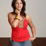 Cute Richa Gangopadhyay Hot Photoshoot