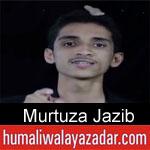 https://www.humaliwalyazadar.com/2018/10/murtuza-jazib-nohay-2019.html