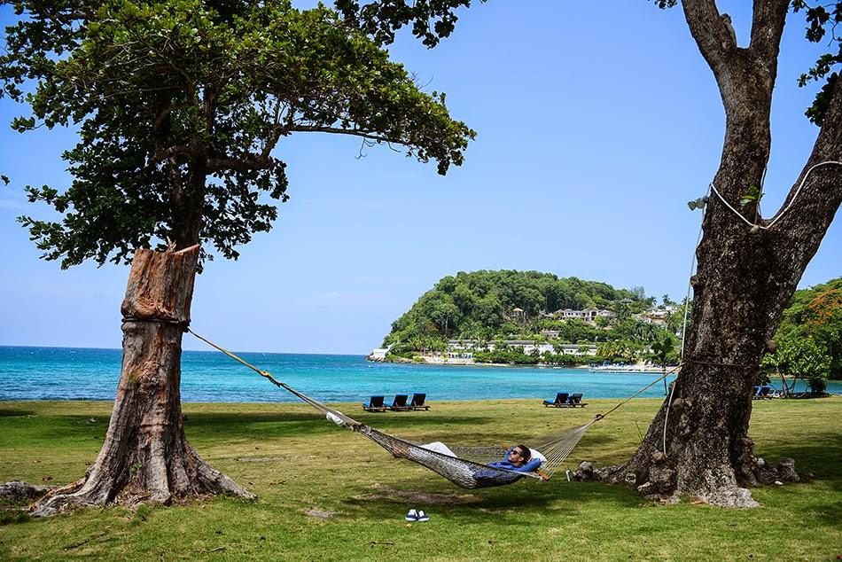lovetheocean Jamaica | GALLA.