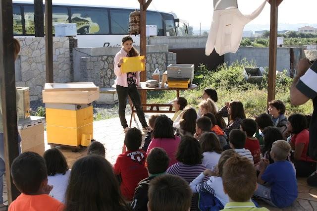Το νέο εντυπωσιακό μελισσοκομικό πάρκο της ANEL & μεγάλος διαγωνισμός με πολλά δώρα!