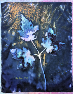 Wet cyanotype, Sue Reno, Image 34