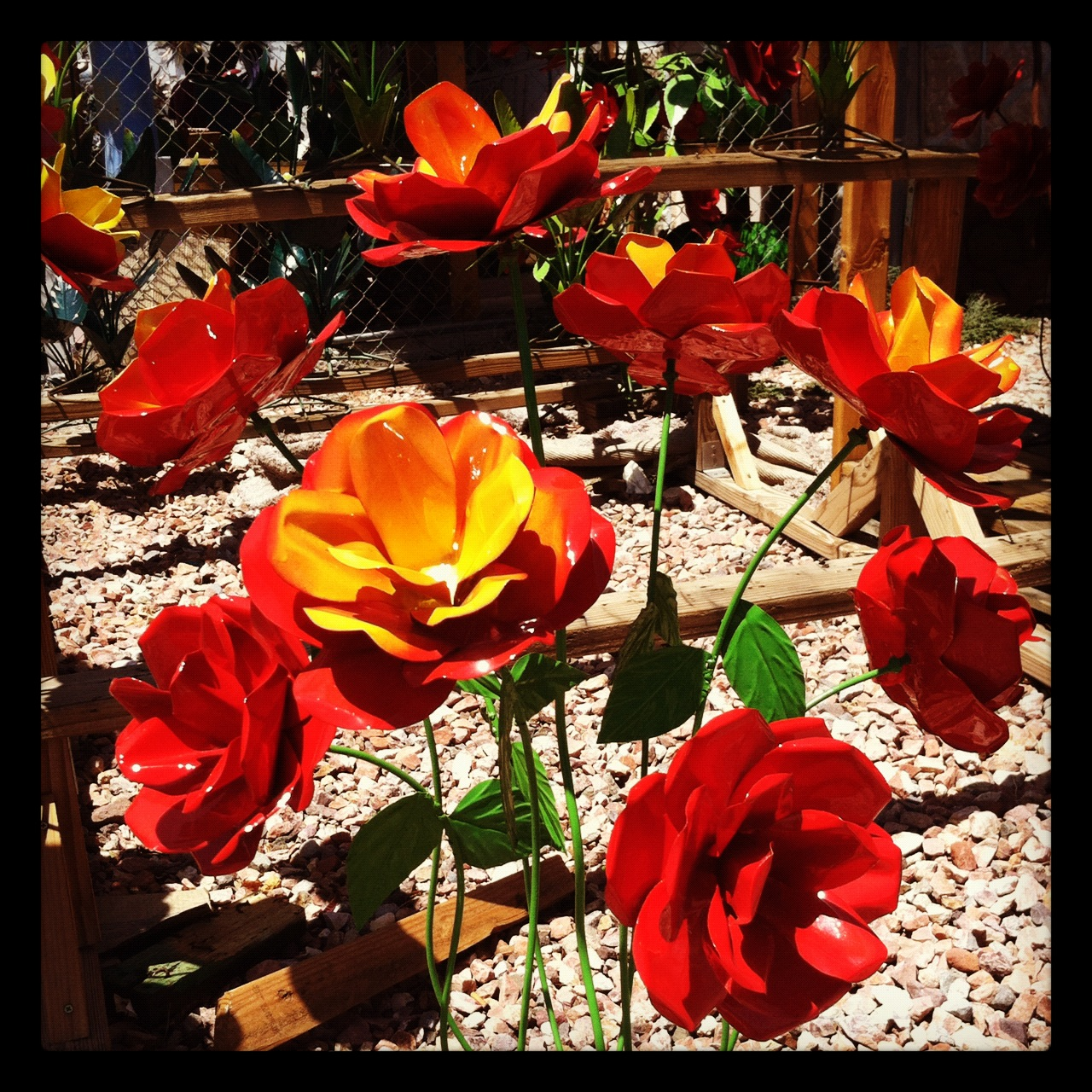 The daily rant forever in bloom - Hacienda interiors boulder city nv ...