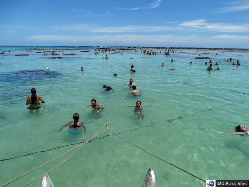 Maragogi, Alagoas - Top 5 destinos para voltar - Blogagem Coletiva