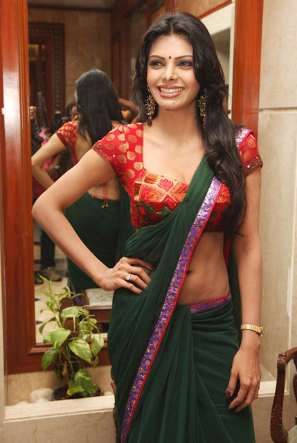 Sheryln Chopra in designer saree