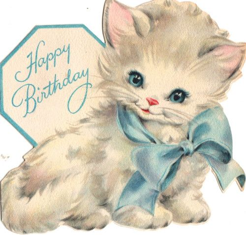 Happy Birthday Wishes Images with Cat