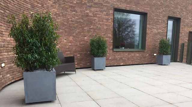 zomeronderhoud planten terras horecaPlantenbakken in zink urban tweedehands voor tegen muur op poten met klimrek voor op terras hangend