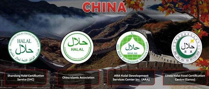 Logo Halal China