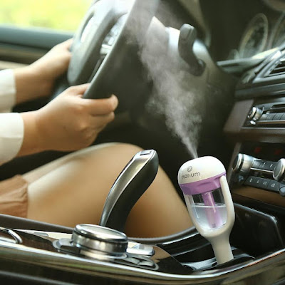 Nanum's Car Humidifier