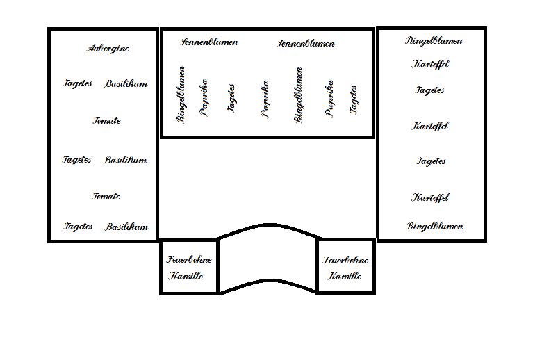 berliner landpomeranze ein berlin gartenblog alles rund. Black Bedroom Furniture Sets. Home Design Ideas
