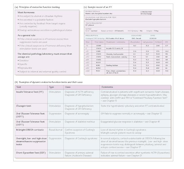 Endocrine Function Tests