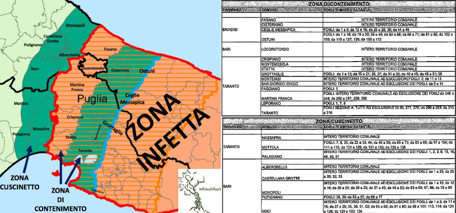 xylella infection buffer zones advance again putting plant nurseries in crisis