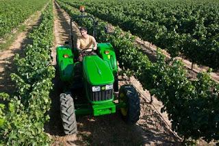 Αγρότες: Προσοχή στις δηλώσεις καλλιέργειας (ΟΣΔΕ)