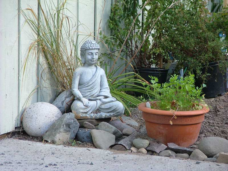 Im Loving Rachael Ray Incorporating Buddha In Design