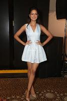 Shanvi Looks super cute in Small Mini Dress at IIFA Utsavam Awards press meet 27th March 2017 19.JPG