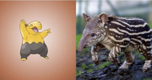 Drowzee is a Malayan tapir