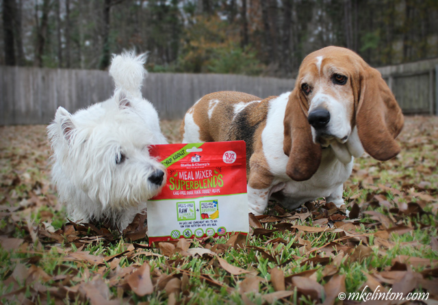 Pierre Westie and Bentley Basset Hound want to open their bag of Stella & Chewy's Meal Mixers