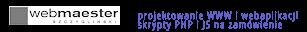 webmaester.pl - profesjonalne projektowanie WWW i webaplikacji