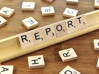Fantasy Credit Report