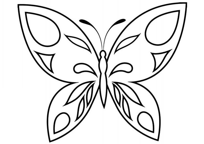 Tranh tô màu con bướm đẹp