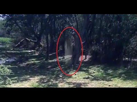 original terrifying ghost photo on garden