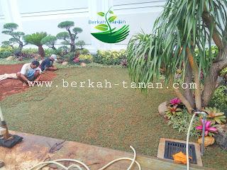Tukang taman profesional di Jakarta
