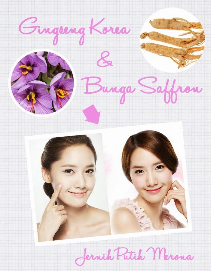 Sasyachi Beauty Diary Manfaat Ginseng Korea Bunga Saffron Untuk Kecantikan