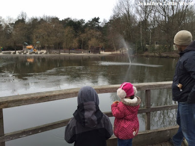 Feeding the ducks at Center Parcs